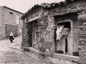 Foto-Reportage, Spanien, Extremadura, W.Eugene Smith, rückständig, allt, historisch, Dorf
