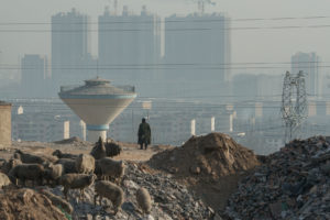 Landschaft, Kohle, Umweltzerstörung, Luftverschmutzung, China, Arbeiter, Technologie,